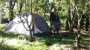 Camping & powered motorhome sites